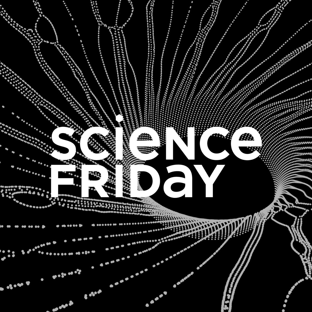 Science Friday Reads Stephen Hawking