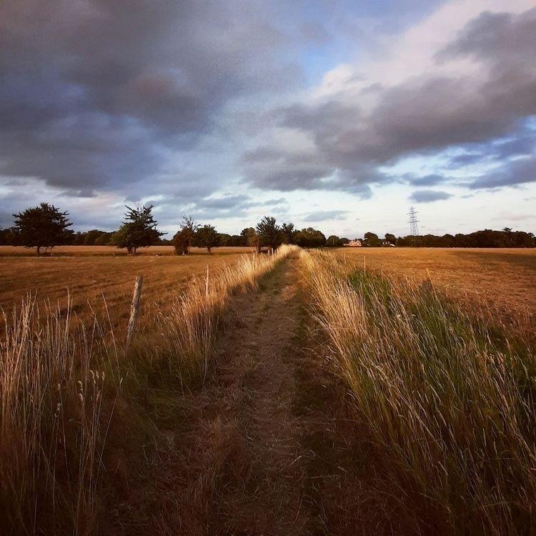 possibilities - path, track, road - estelleclarke | ello
