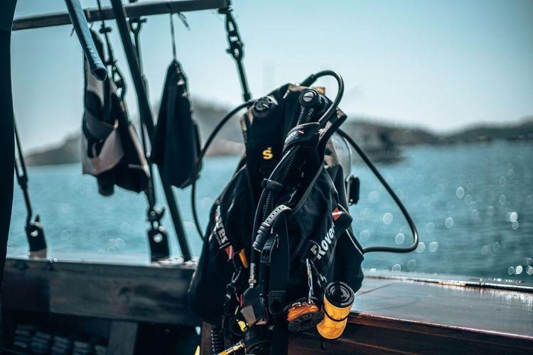 Komodo diving liveaboard advent - petitandromeda   ello
