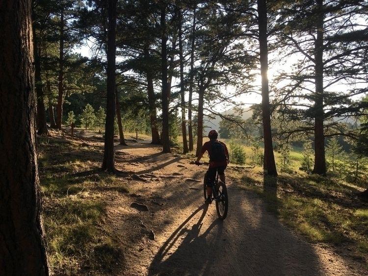mountainbiking, ellocycles, sunset - mtncycle | ello