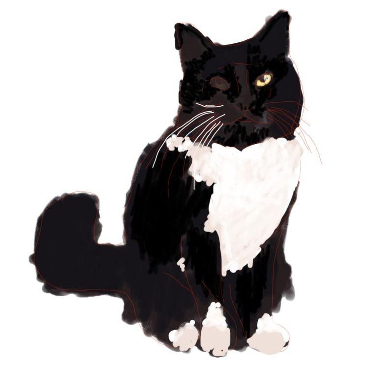 Digital drawing cat - danielmllr | ello