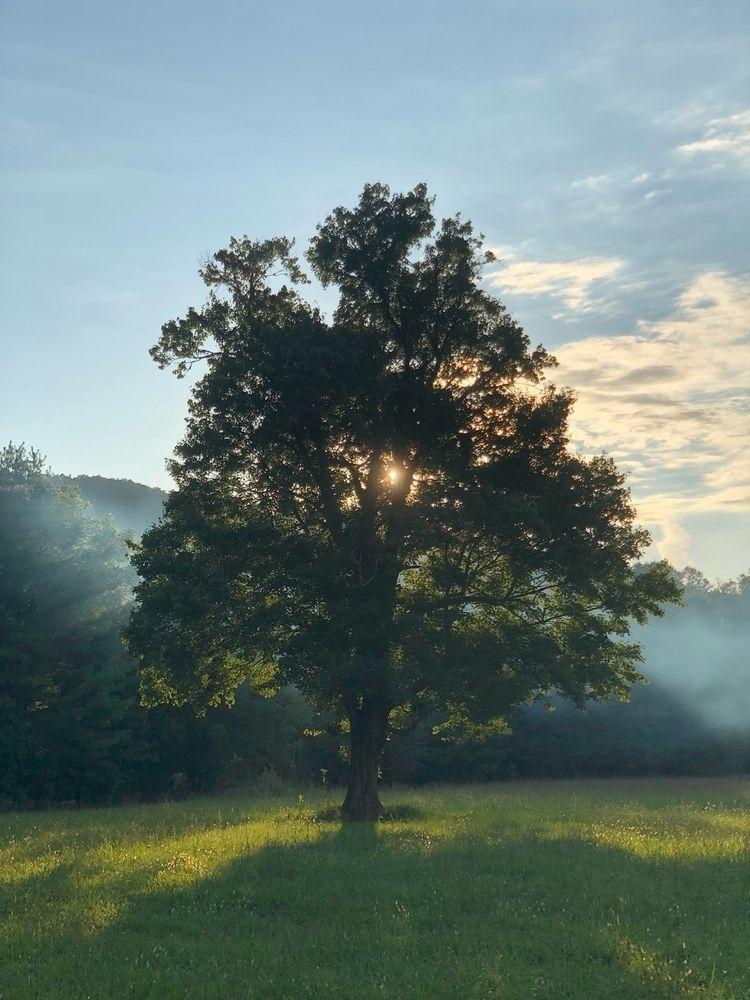 Sunset, CadesCove, Photography - onceanartifact | ello
