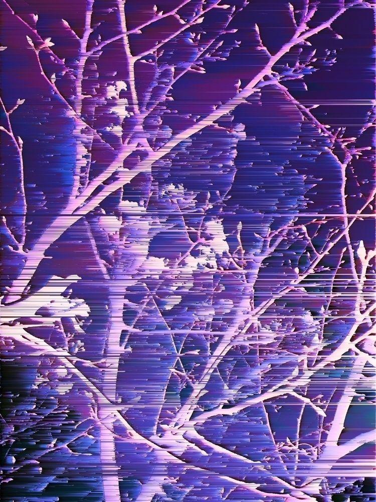Late winter nigh blossom - photography - bakakid   ello