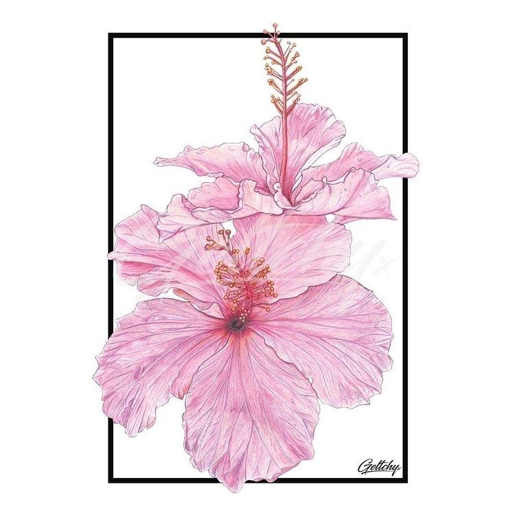 Tropicool Hibiscus! Signed, Num - geltchy | ello