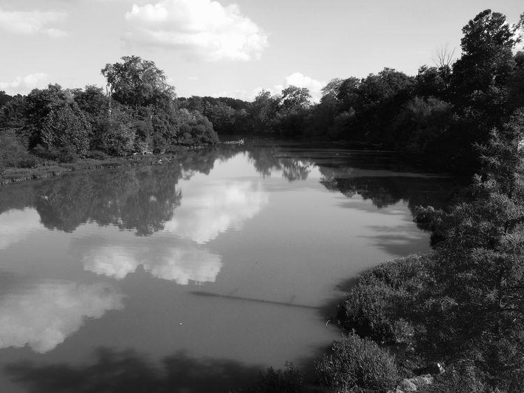 Alum Creek Westerville, Ohio - twogreenthumbs | ello