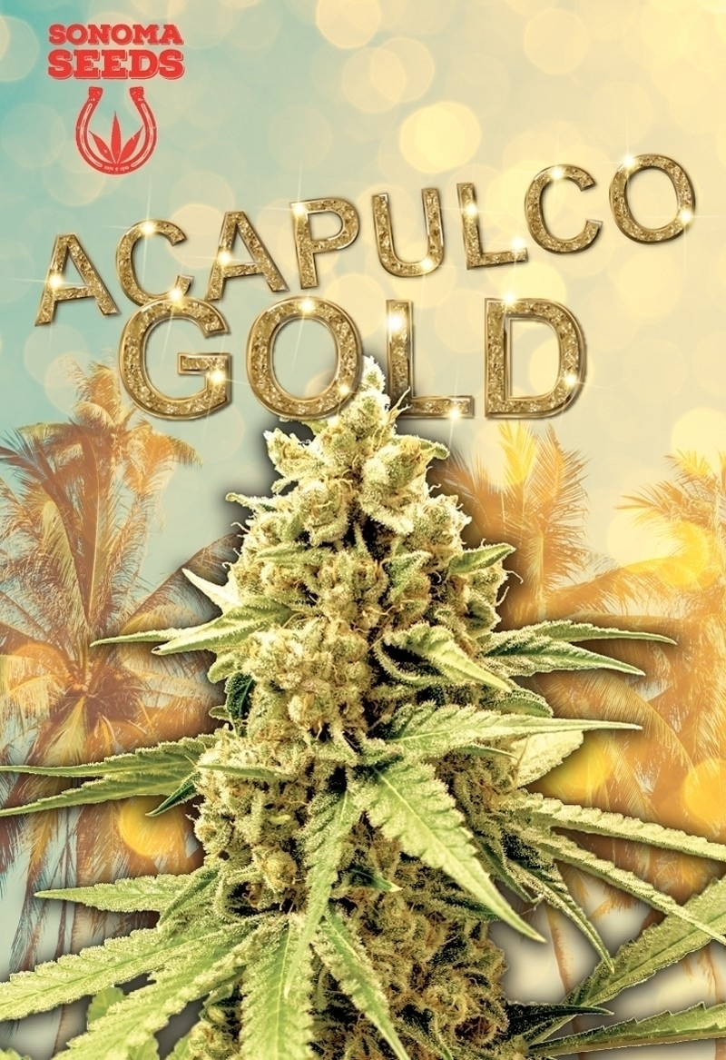 Acapulco Gold reputation solid  - sonomaseeds | ello