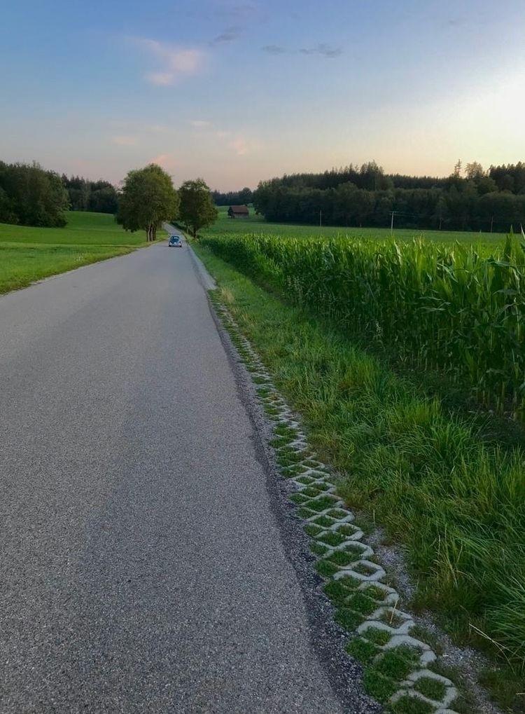 Allgäu - photography, summer, nature - ivop   ello