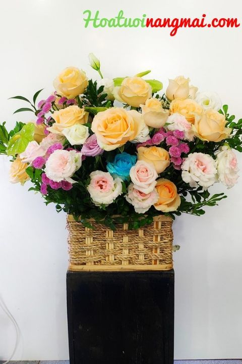 Tổng hợp những mẫu hoa chúc mừn - dathoanhanhnangmai | ello