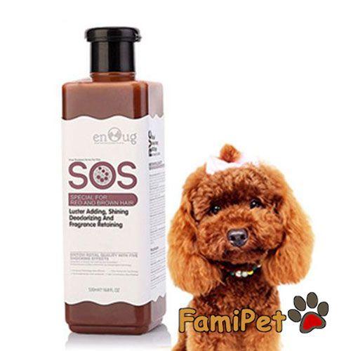 Sữa tắm cho chó Poodle nâu: Hiế - shopthucungfamipet | ello
