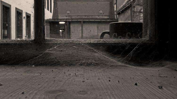 2019.09.16 | Mug window Leica X - grieger | ello