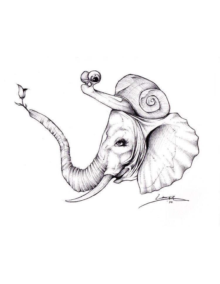 Awwwww.. snailephant - tlamph   ello