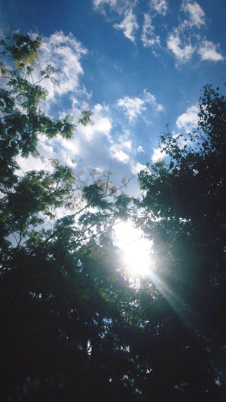 beautiful day today! :sunny:️  - kohananeptune | ello