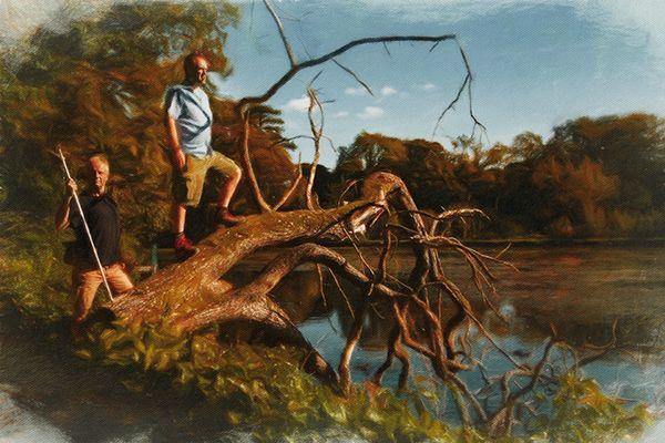 Tree Hunters - Pateley Bridge S - mikkhudson | ello