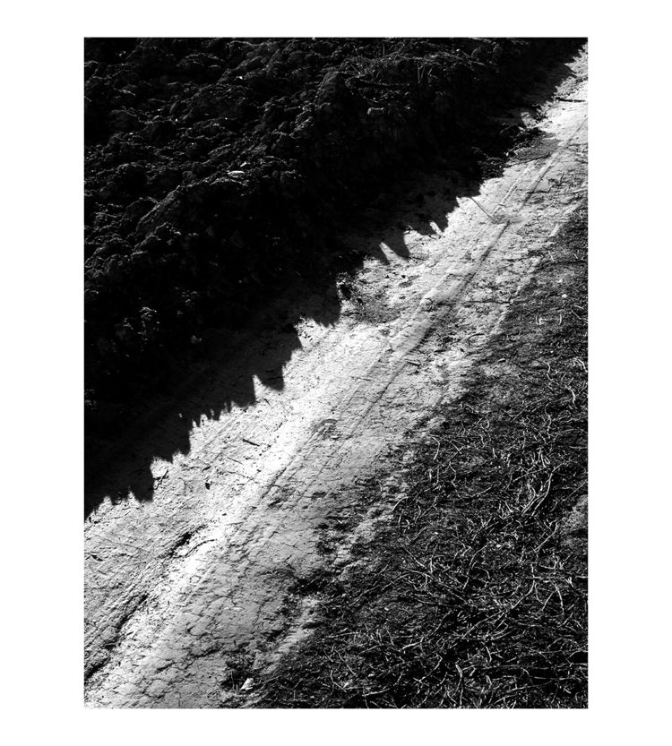Micro Landscape - bw, bnw, blackandwhitephotography - brthelemy | ello