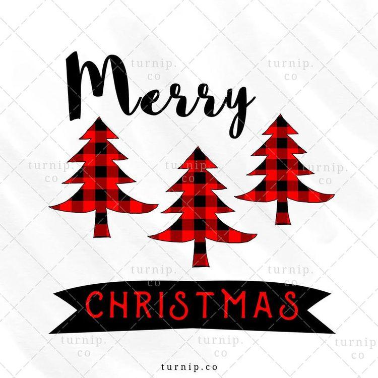 Christmas Tree PNG Sublimation  - turnipco   ello