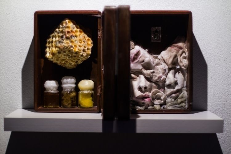 Bee Wasp (2013) 𝑀𝑖𝑥𝑒𝑑-𝑚𝑒𝑑𝑖𝑎 𝑎𝑠𝑠 - laphanesque | ello
