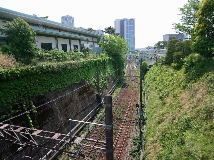 Setagaya, Japan - hamchang | ello