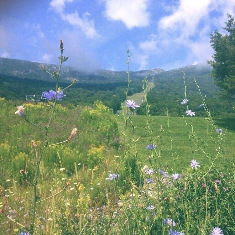fond nature beauty holds, enjoy - ar14nna | ello