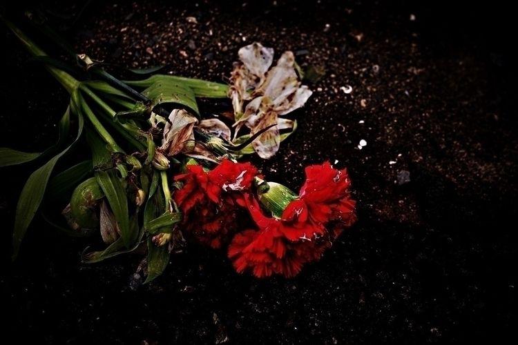 photography, darkphotography - keina | ello