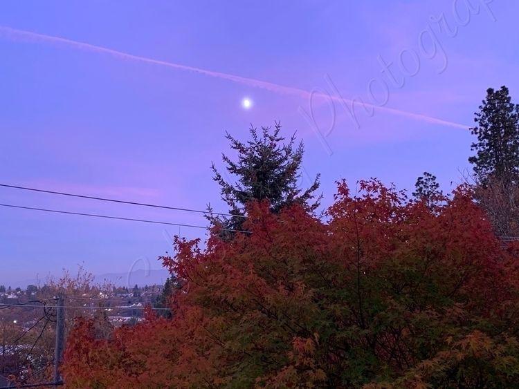 Pollution twilight - pollution, aftersunset - schoolingdiana | ello