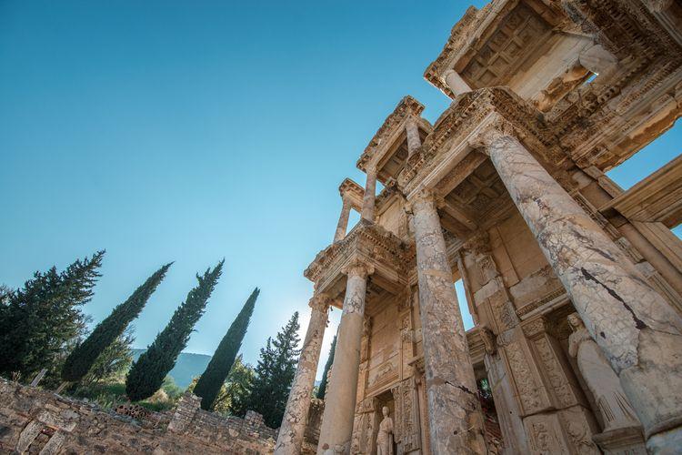 Library Celsus. purpose, exagge - pierrebeauregard | ello