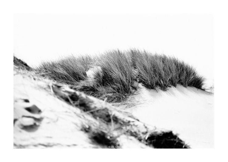 monochrome, blackwhite, analog - ol_sea | ello