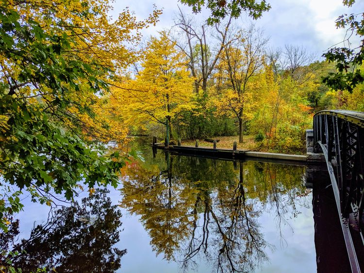 Fall, leaves, pond, lake, nature - exiledscout | ello