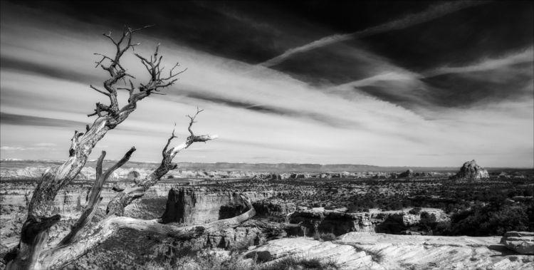 overlooking Eagle Canyon Colora - docdenny | ello