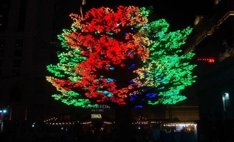Tree Light Las Vegas, Nevada Ha - wayves   ello