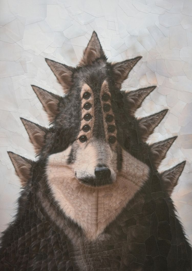 Ben, 8.2 11.6 inches - dogs, collage - loladupre | ello