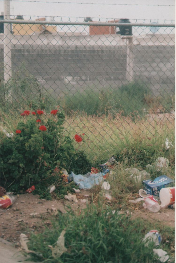 vacations years - rosesarered, dump - kashhj | ello