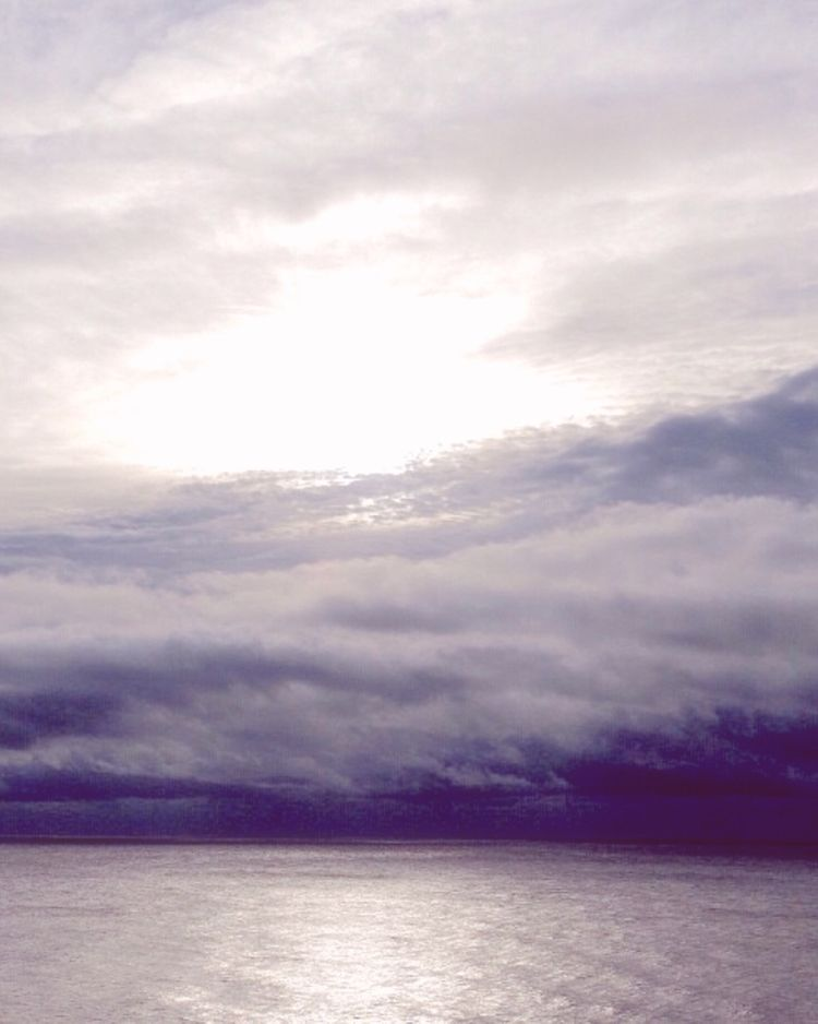 mood - fog, nature, ello, polaroid - ellephoto | ello