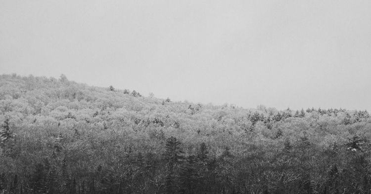 Canadian winter pretty December - will_mountain | ello