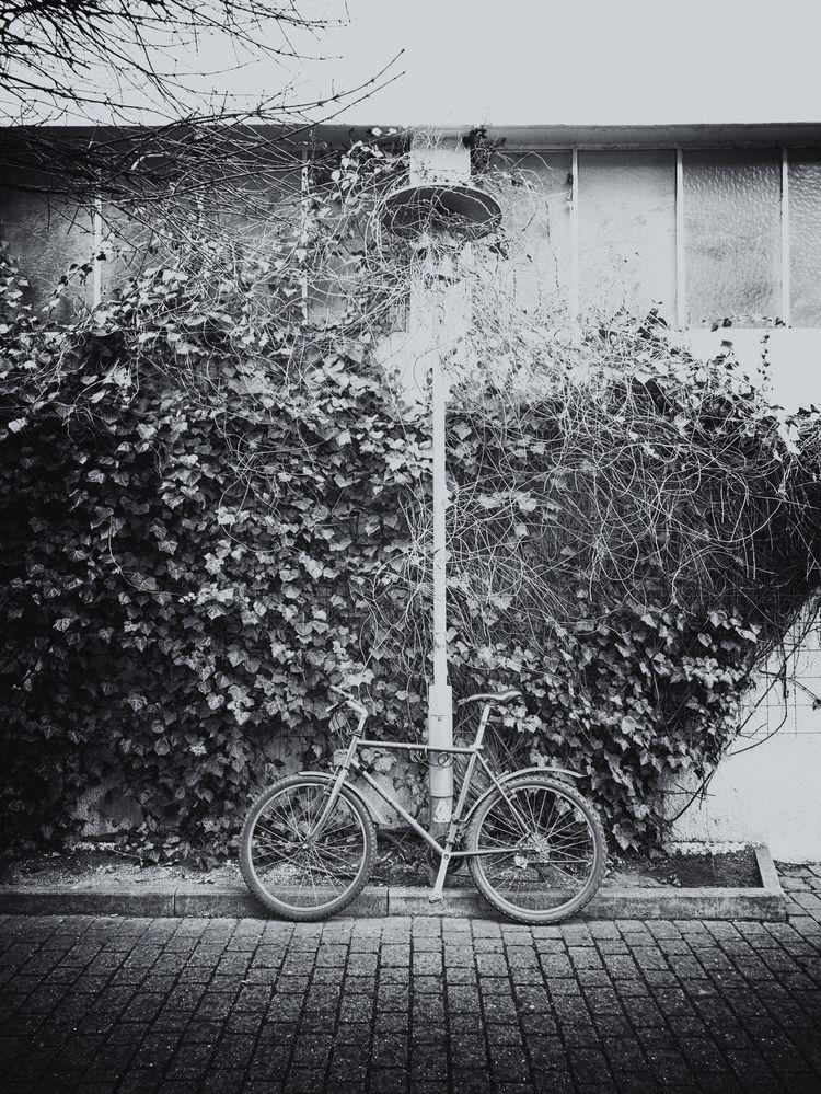 militia - photography, bike, wideangle - marcushammerschmitt | ello