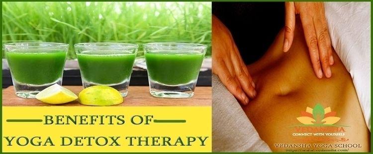 Yoga Detox Therapy Rishikesh    - yogadetoxtherapy   ello