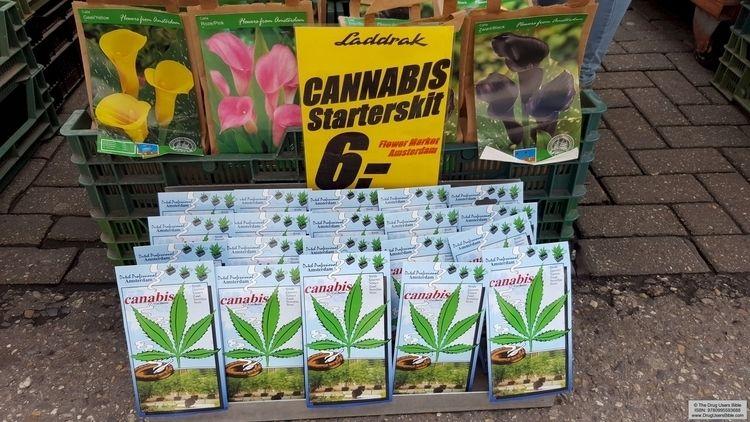 GROW flower market Amsterdam - cannabis - drugusersbible   ello