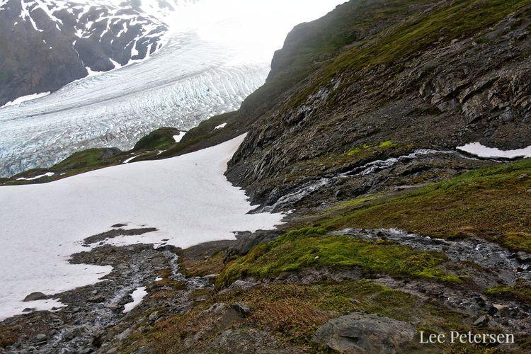 hiking guide Harding Icefield T - lwpetersen | ello