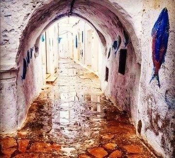 good morning Hammamet ..Tunisia - simou   ello
