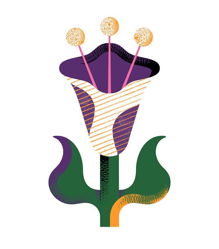 Flowers - illustration, design, artwork - alconic | ello