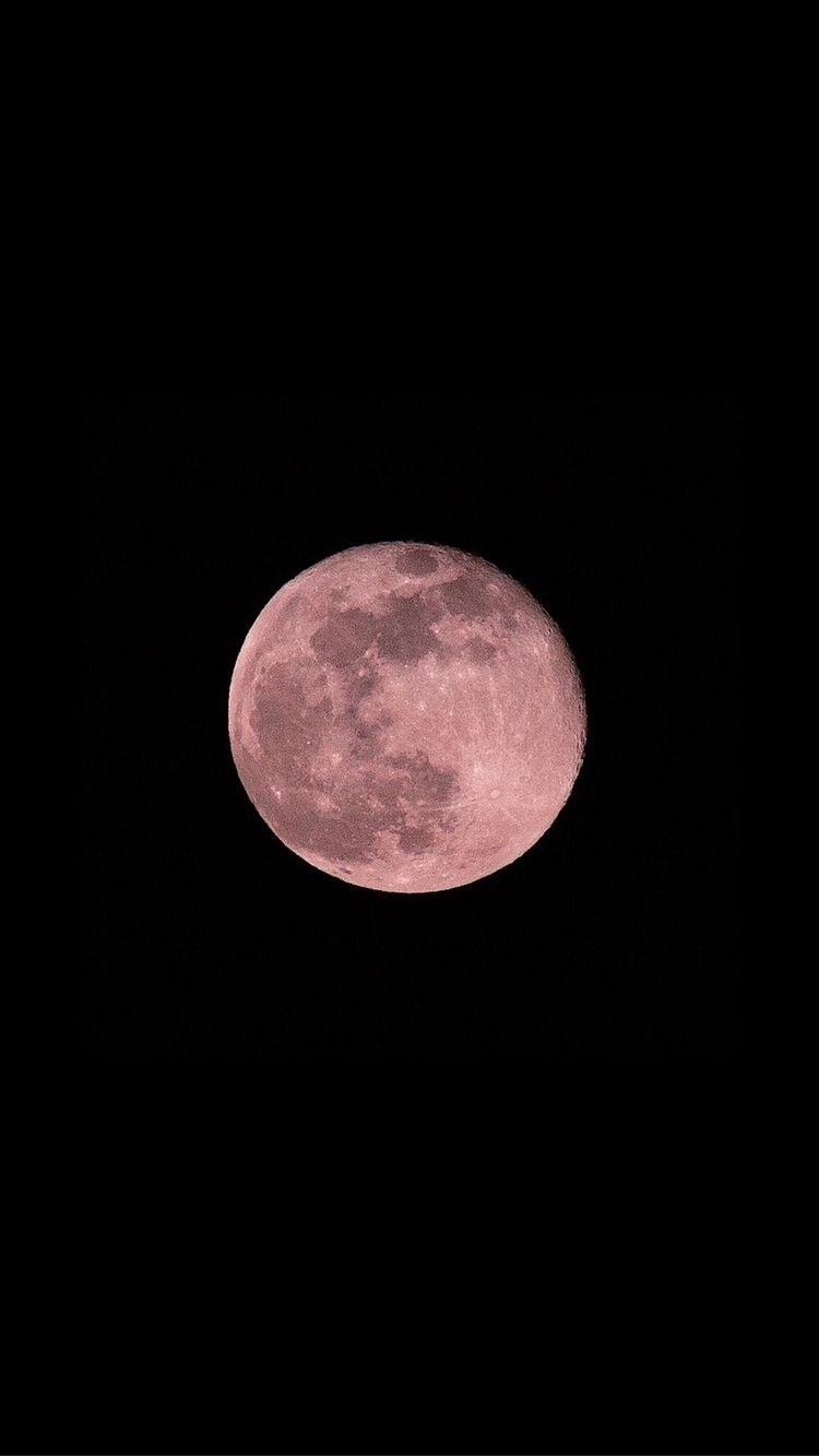 Super Pink Moon 2020 (Title lin - mel_costanzo | ello