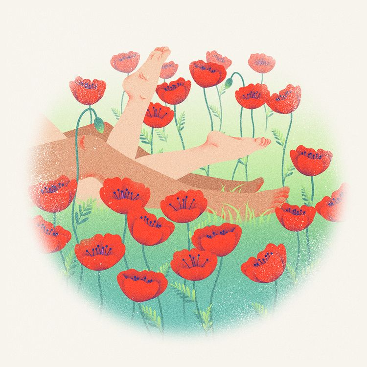 DREAM POPPIES - chuchubriquet, digitalillustration - chuchubriquet | ello