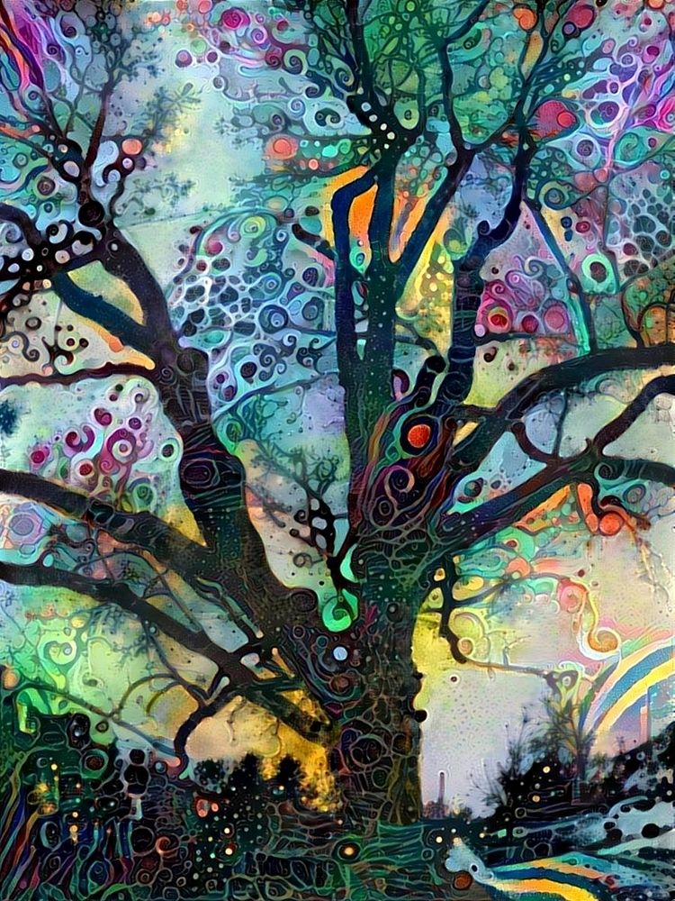 Avalon tree - photography - kenlong | ello