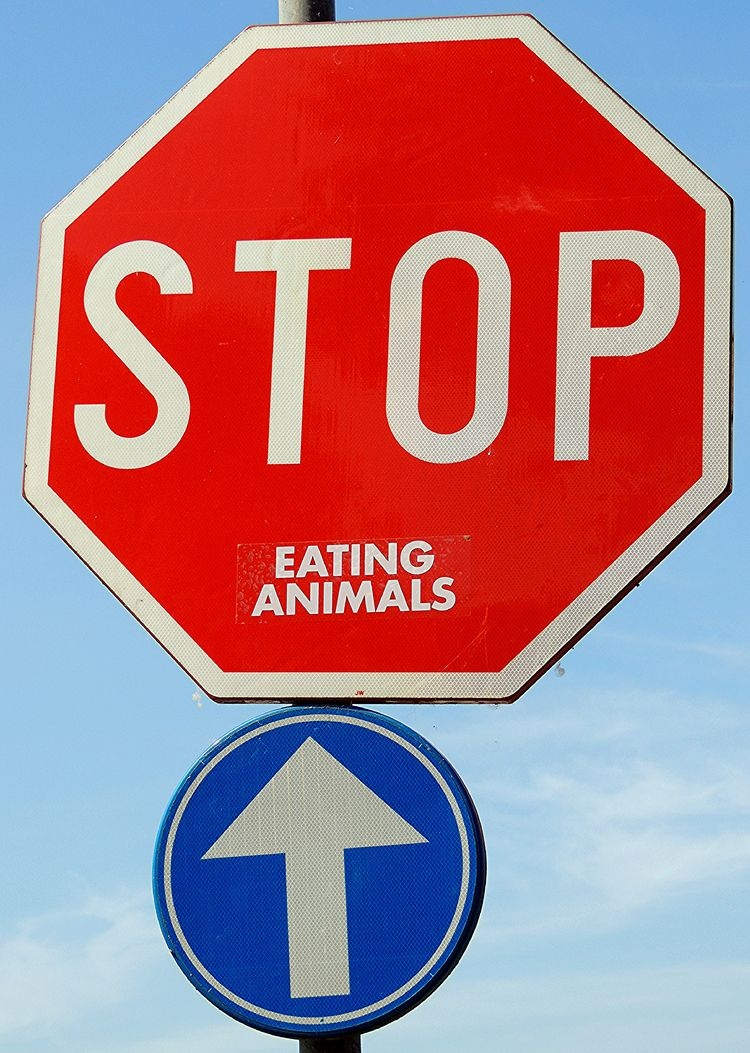 Stop Eating Animals photo Johan - johantroch | ello