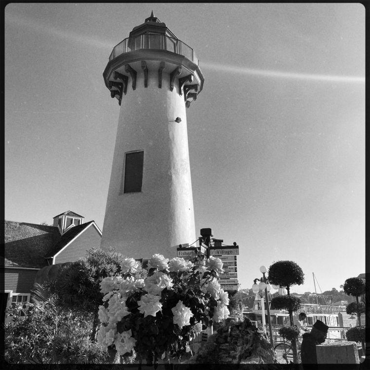 Marina del Rey | Los Ángeles - revebleu | ello