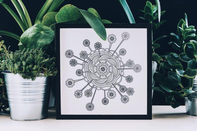 Mandala 🦠 Introducing Phase 1 C - keyleygrahamdesigns   ello