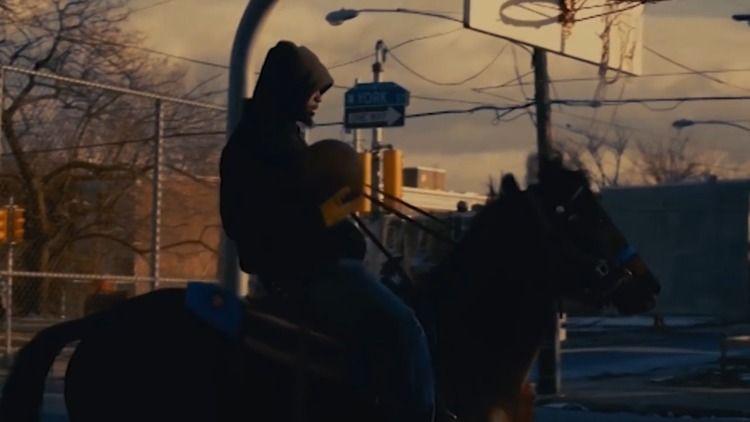 horse - gungacolors | ello