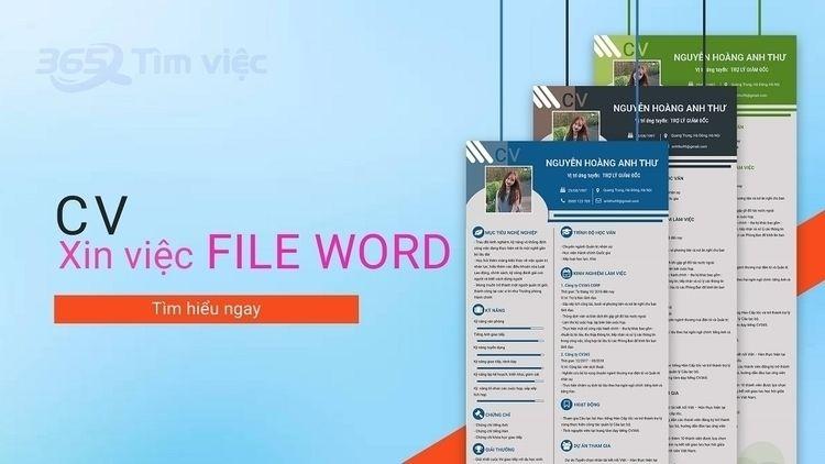 Download mẫu CV tiếng Anh đẹp f - cvxinviec365 | ello