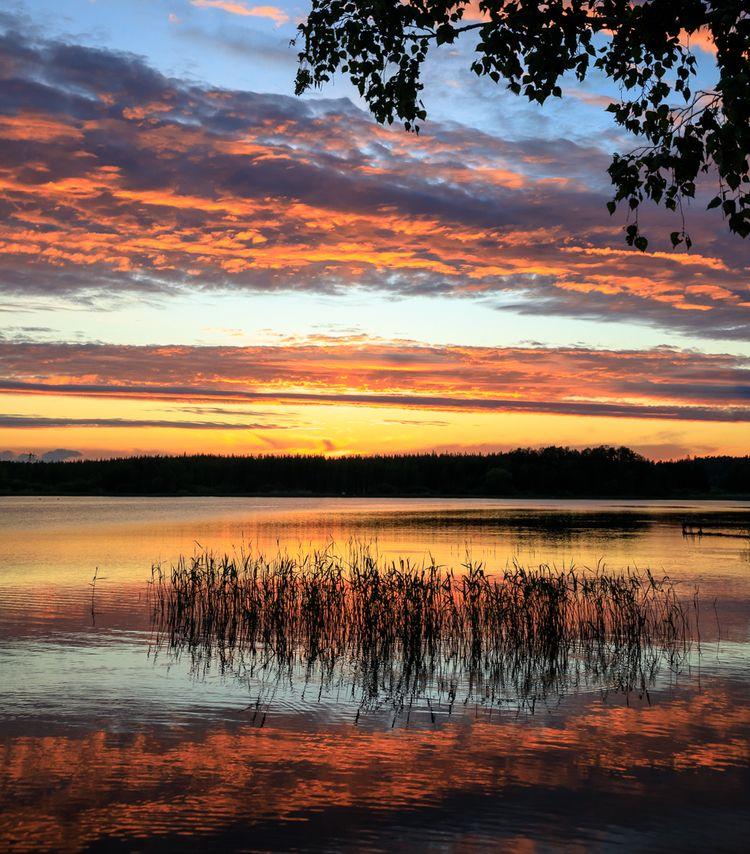 Summer eve - photography, landscape - anttitassberg | ello