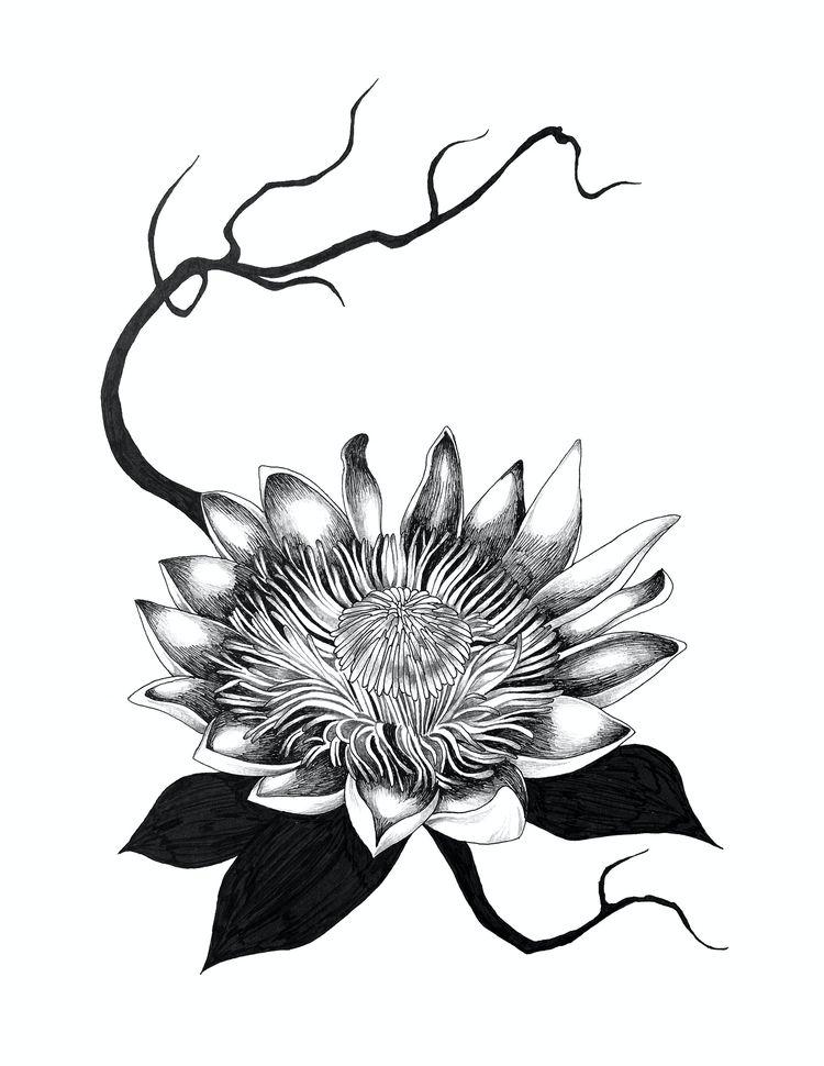 Ikebana healing 5 - Protea cour - yushinkato | ello