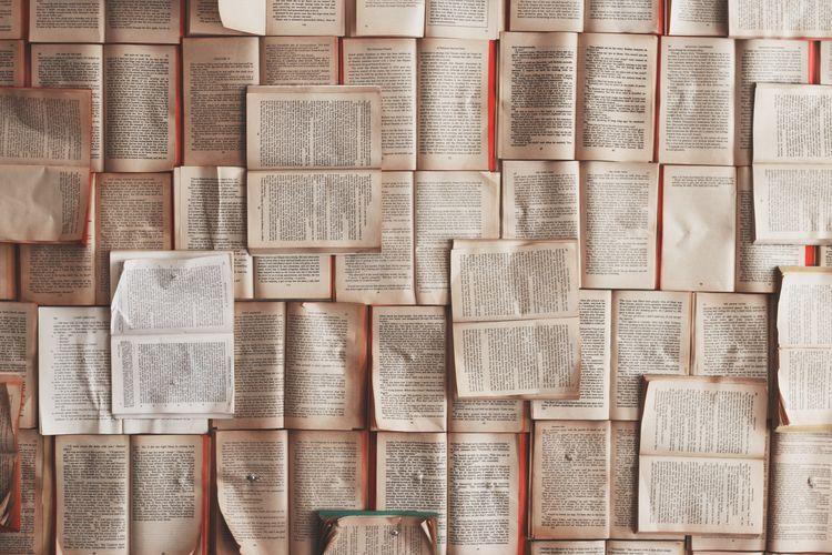 Pro Tips Find Literary Agent ag - jordyalova   ello